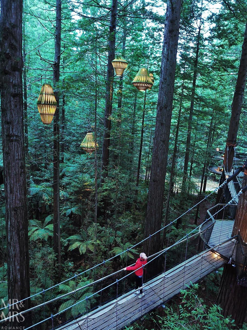 Redwoods Treetop Walk, Rotorua, NZ