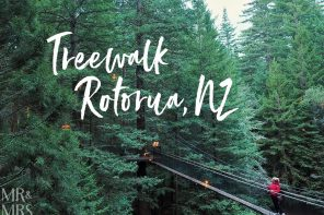 View from the top – Redwoods Treewalk, New Zealand