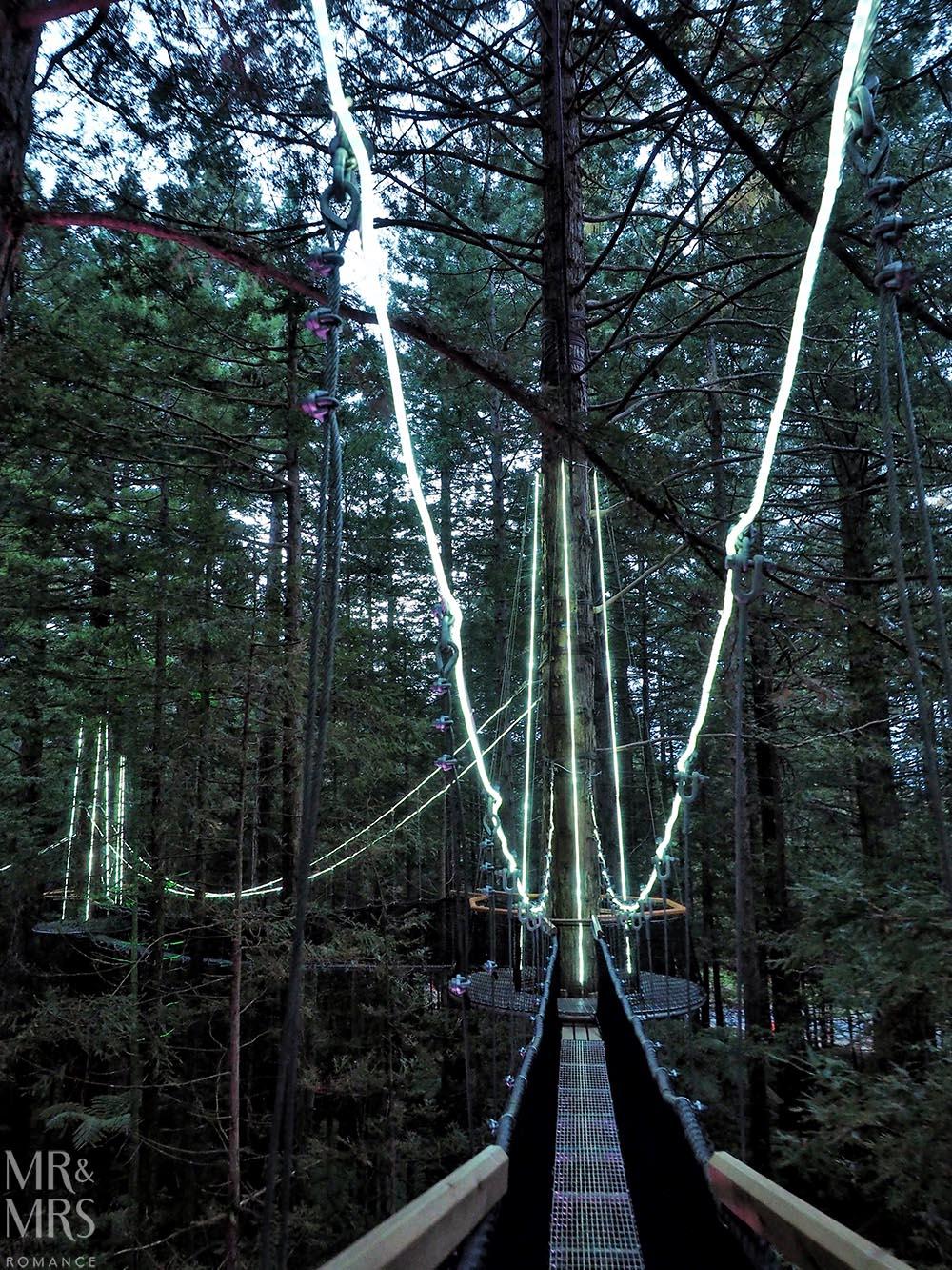 Redwoods Treewalk, Rotorua, New Zealand - lit-up walkways