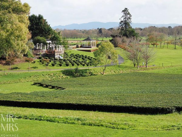 Zealong Tea Estate, Hamilton, Waikato, New Zealand