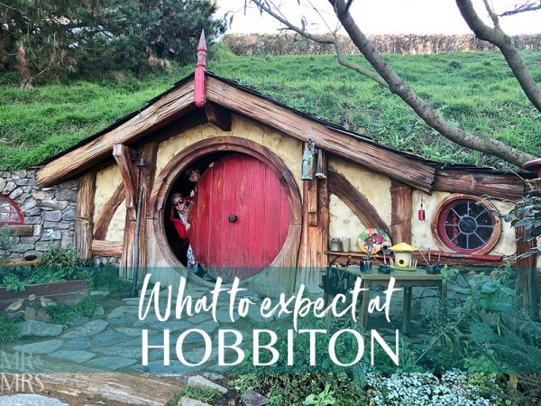 Hobbiton Movie Set, Waikato, New Zealand