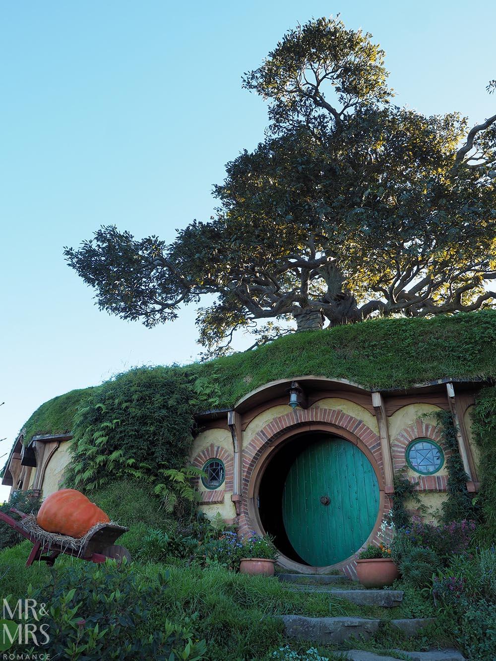 Hobbiton Movie Set, Waikato, New Zealand - Bag End and the tree