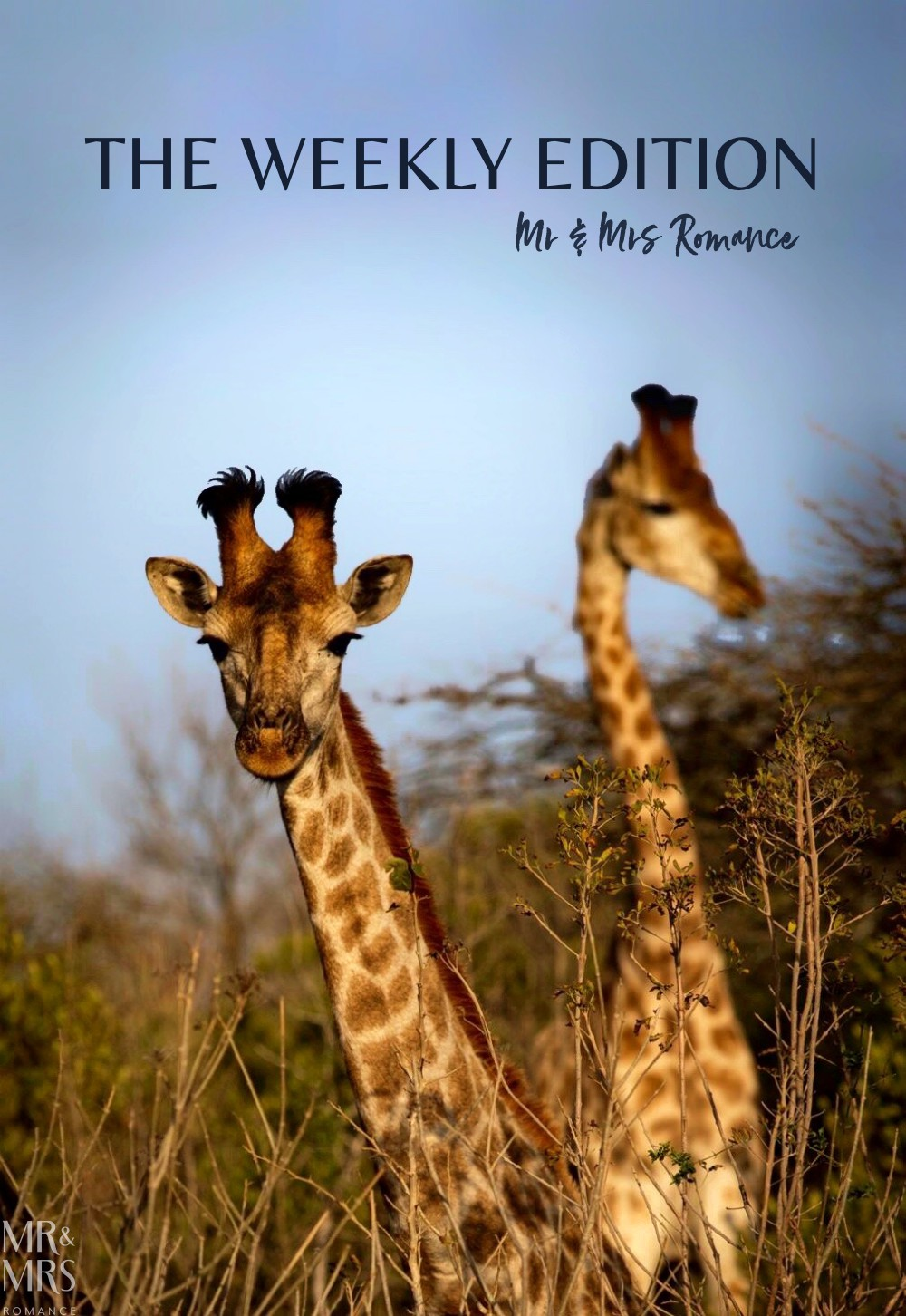 South Africa Tourism -