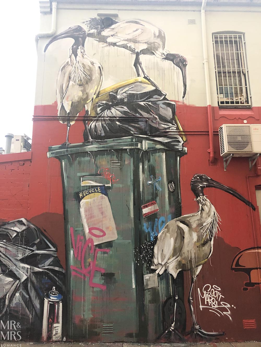 Bin Chickens - Scott Marsh