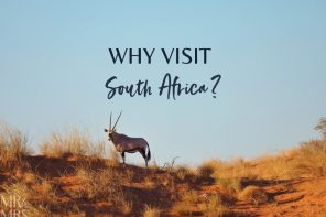 Why visit South Africa?