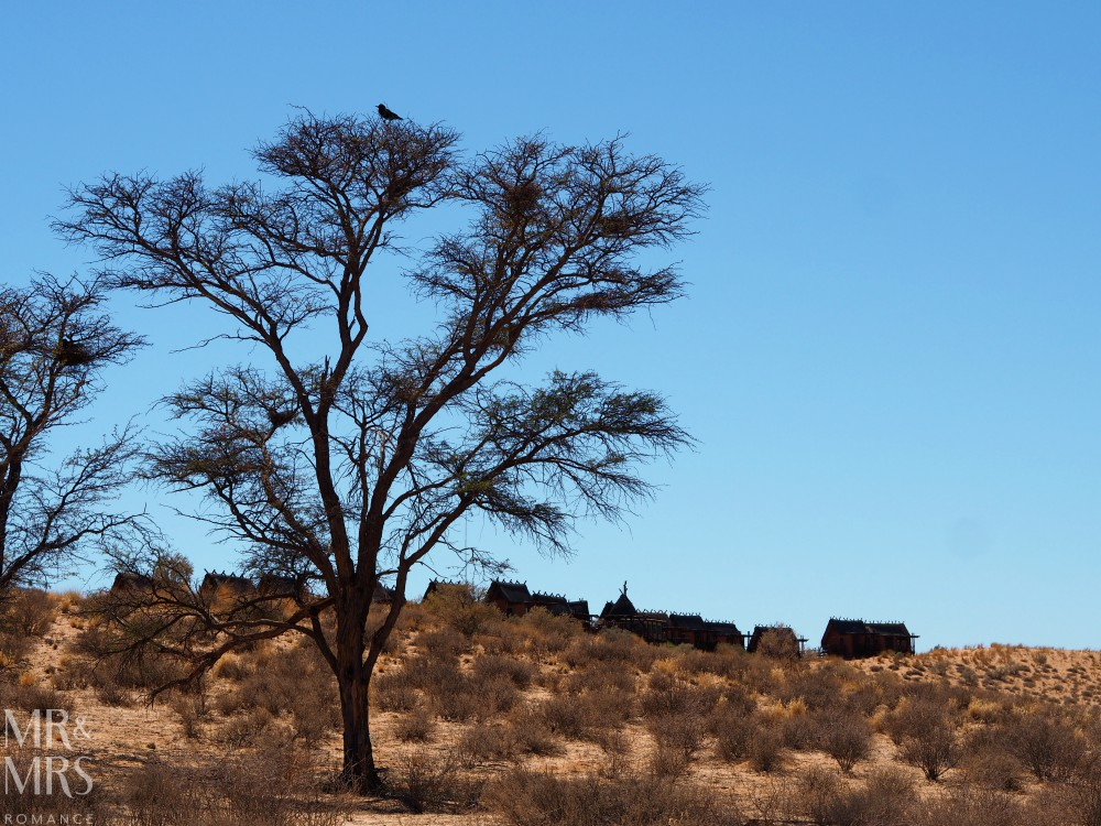 Visit South Africa - !Xaus Lodge Kgalagadi Transfrontier Park