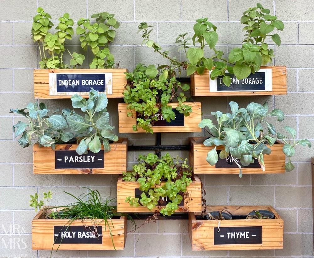 Well Hotel Bangkok, Sukhumvit Soi 20 - healthy plants