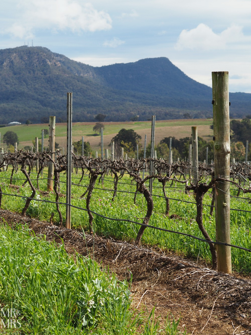 NSW destination guide - Hunter Valley