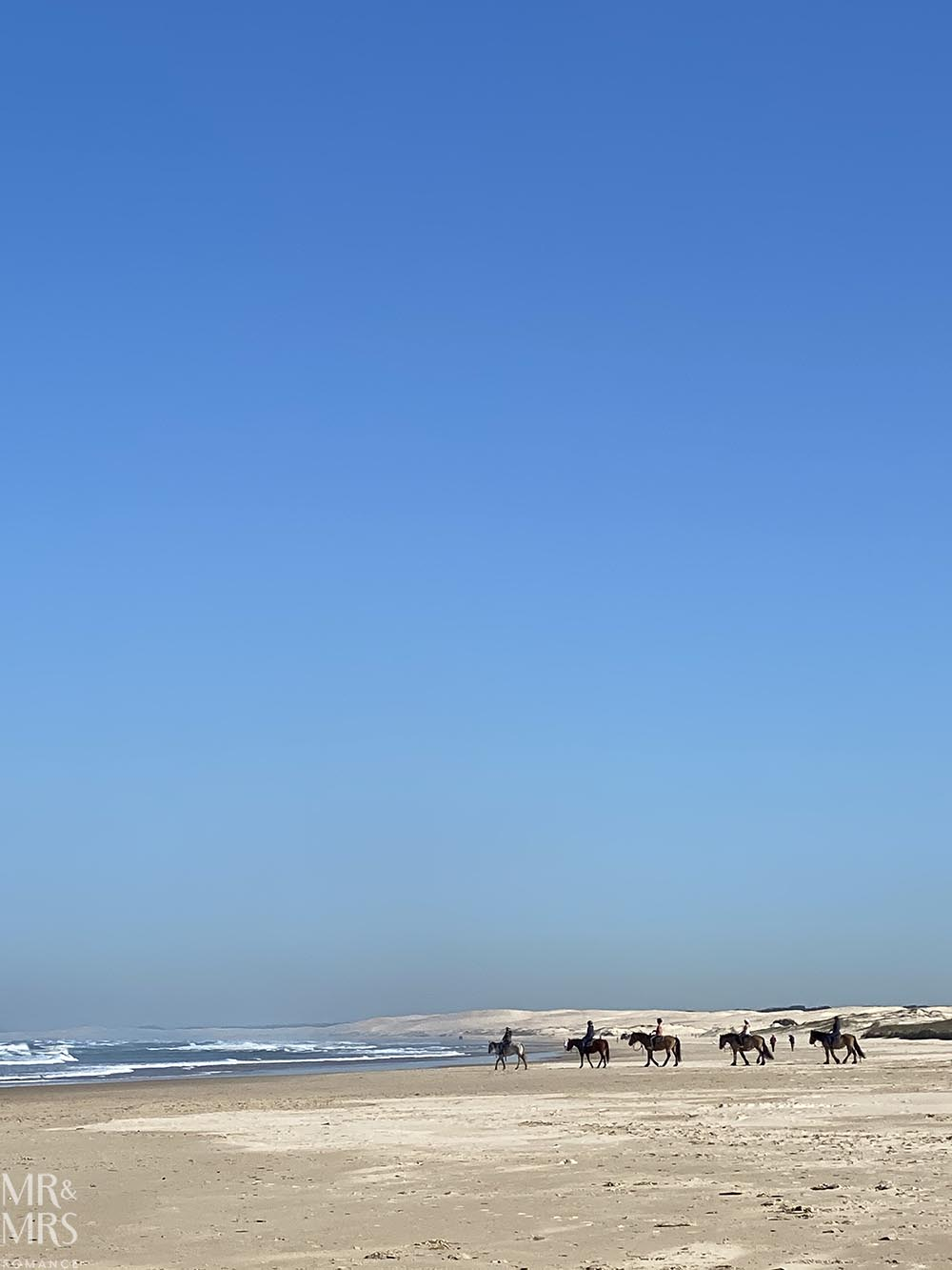 Horses on the beach, Birubi Beach Stockton BeachAnna Bay, Port Stephens NSW