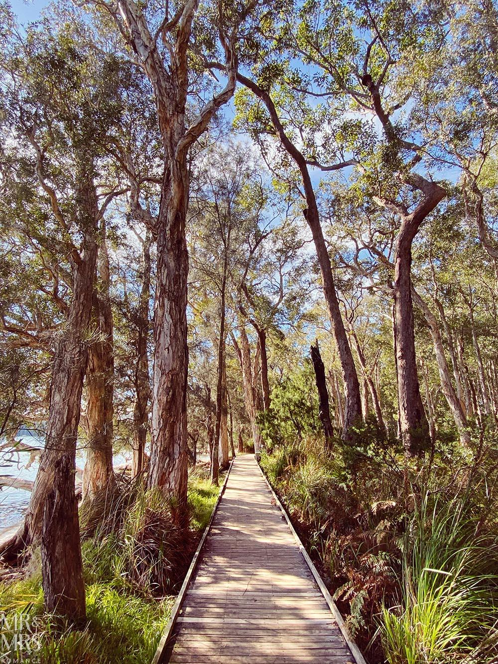 Tanilba Bay Boardwalk, Lemon Tree Passage