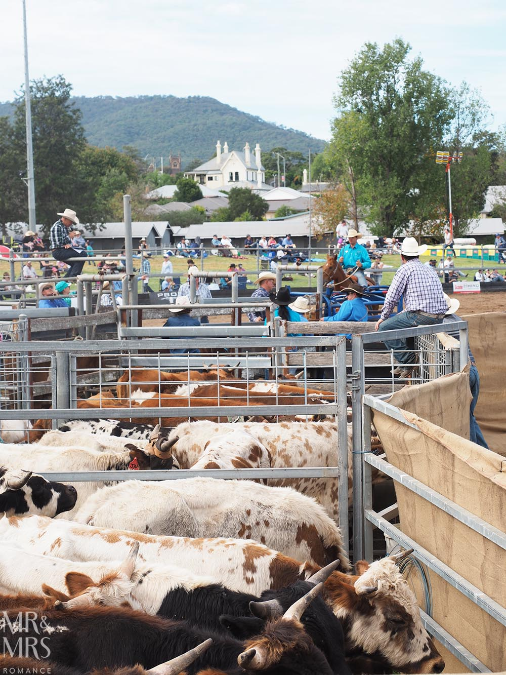 NSW country towns to visit - Scone