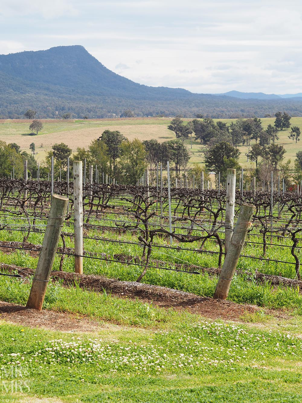 NSW country towns to visit - Orange