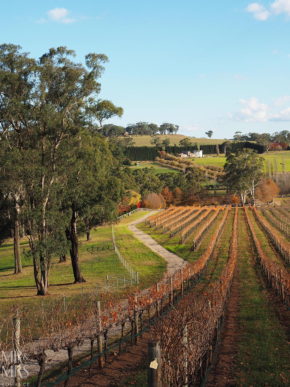 NSW country towns to visit - Bowral