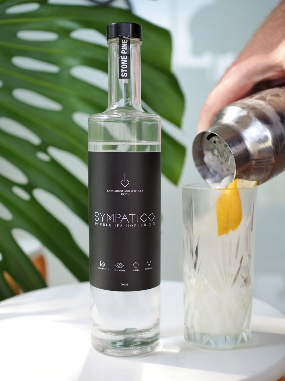 Stone Pine Distillery Sympatico gin - gin fizz cocktail