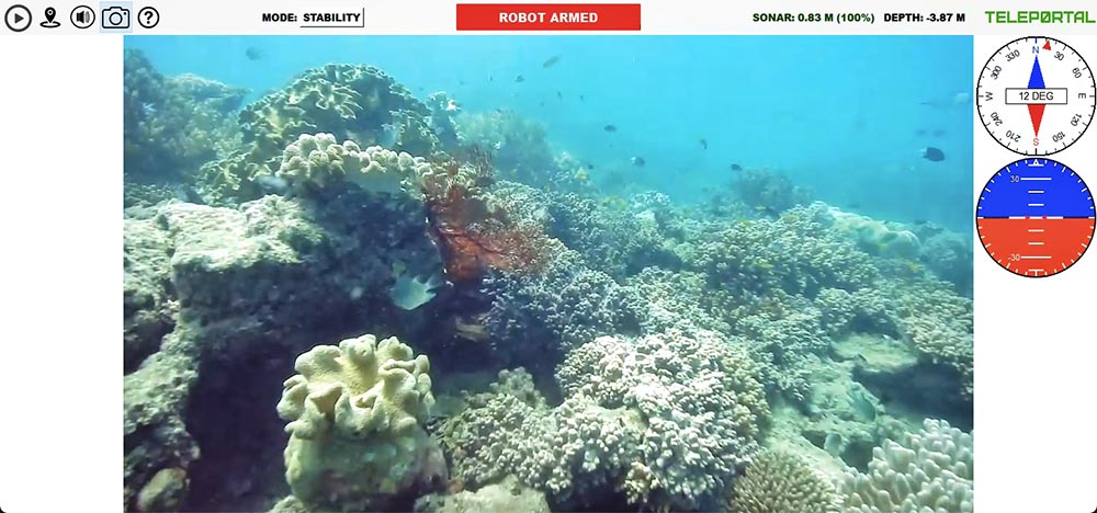 Teleportal drive your own underwater drone on the Great Barrier Reef - coral