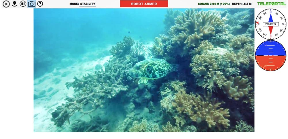 Teleportal drive your own underwater drone on the Great Barrier Reef - hiding parrot fish