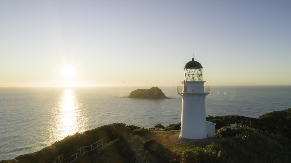 Revenge travel - Tairawhiti NZ
