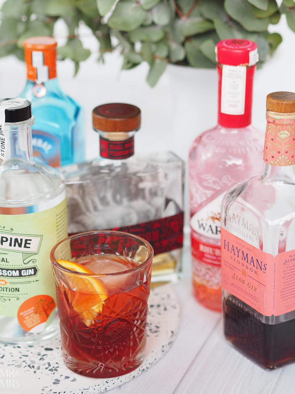 Negroni cocktail gins