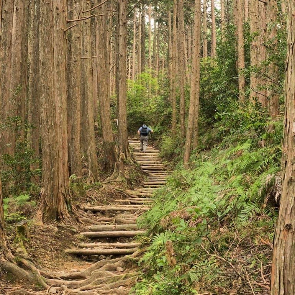 Walk Japan - explore Japan on foot hiking