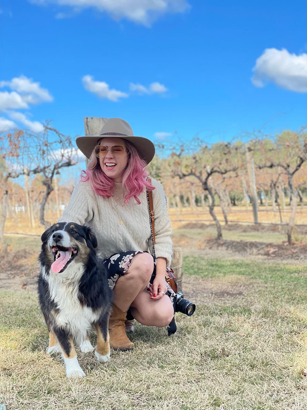 Whispering Brook Estate Olive Long Table Lunch, Hunter Valley - Mr & Mrs Romance - Brook the Roadsend Australian Shepherd