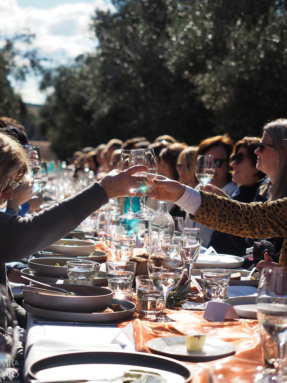 Whispering Brook Estate Olive Long Table Lunch, Hunter Valley - Mr & Mrs Romance - cheers at the table