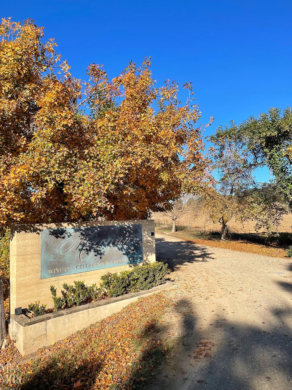 Margan Wines Hunter Valley Winery - driveway